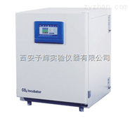 BPN-150RHPBPN系列新型二氧化碳培养箱
