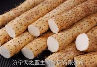 黄姜皂素(薯蓣)清洁生产工艺转让技术支持