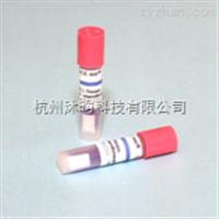 H3723T高压生物指示剂