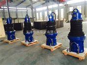 QZB系列潜水轴流泵