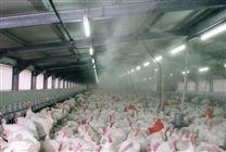 养猪场工业加湿器