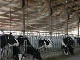养鸡厂空气工业加湿器