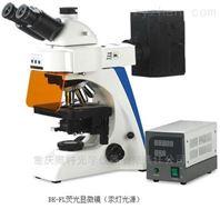 正置熒光顯微鏡BK-FL