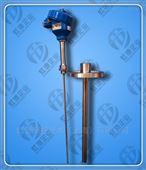 供應防爆熱電阻產品WZPK-220生產
