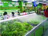 生鲜区蔬菜展台喷雾加湿器