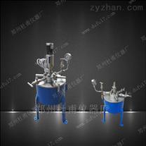 加氢用微型高压反应釜