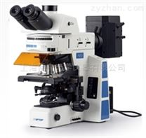 科研级正置荧光显微镜