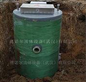 大流量排水防汛泵站 一体化雨水提升泵站