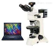 PL-180SZ科研级透反射偏光显微镜