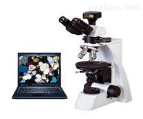 PL-160SZ三目透射偏光显微镜
