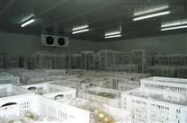 气调库专用工业加湿器