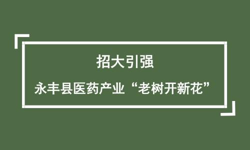 """招大引强 永丰县医药产业""""老树开新花"""""""