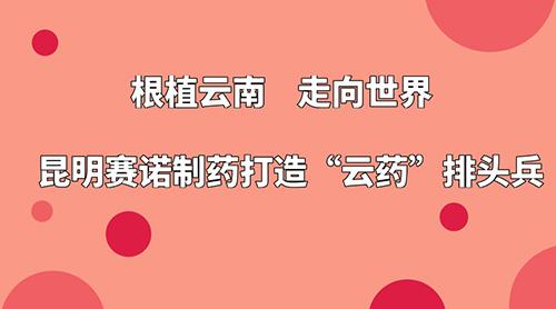 """根植云南 走向世界 昆明赛诺制药打造""""云药""""排头兵"""