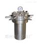 CF-25ml小型不锈钢'高压反应釜
